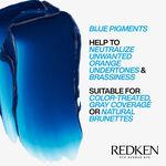 Redken CE Brownlights Conditioner 300ml