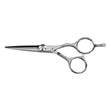 Saiza Scissors Off Tarantula 5