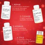 Olaplex Shine Bright Geschenkset